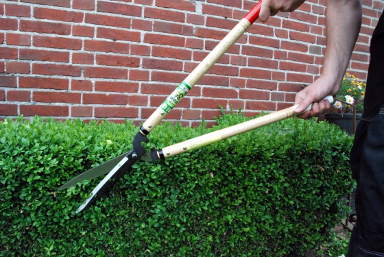 Product image Hedge shears Okatsune 230: long handled, long-bladed