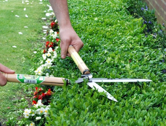 Product image Hedge shears Okatsune 231: short handled, long-bladed
